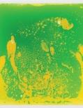 Green liquid tile