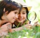 Shutterstock 135191687