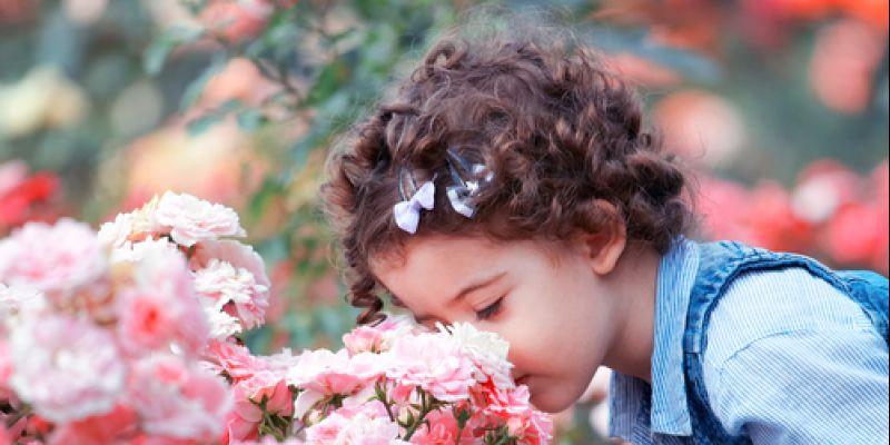Shutterstock 110145404-2
