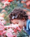 Shutterstock 110145404