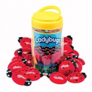 Ladybug stones
