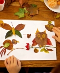 Leaf activities thumbnail